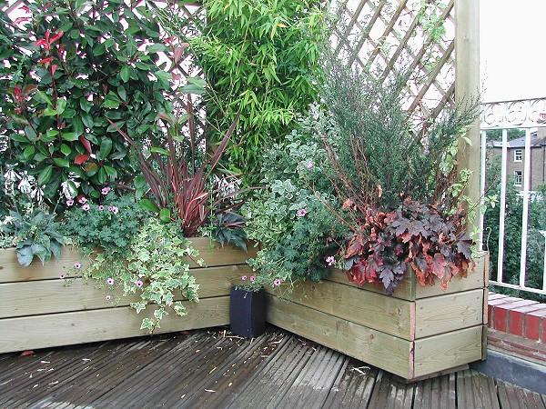 Landscape Gardening Company In London